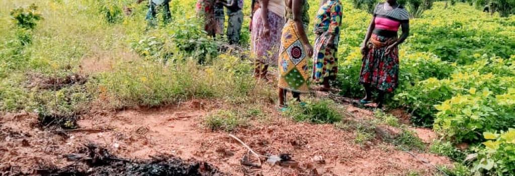 Sur la photo, on peut voir le charbon de bois qui va être mélangé à la terre autour des arbustes. Ainsi se formera une sorte de terra preta, très fertile.