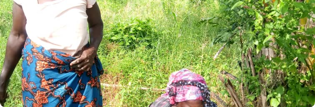 À Klala, le village le plus proche de notre centre agricole EFIDO, femmes et hommes ont planté des arbres.